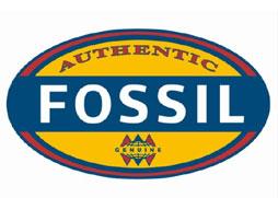 Referenz-fossil